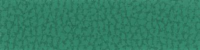 # KLZ 134 GREEN APPLE